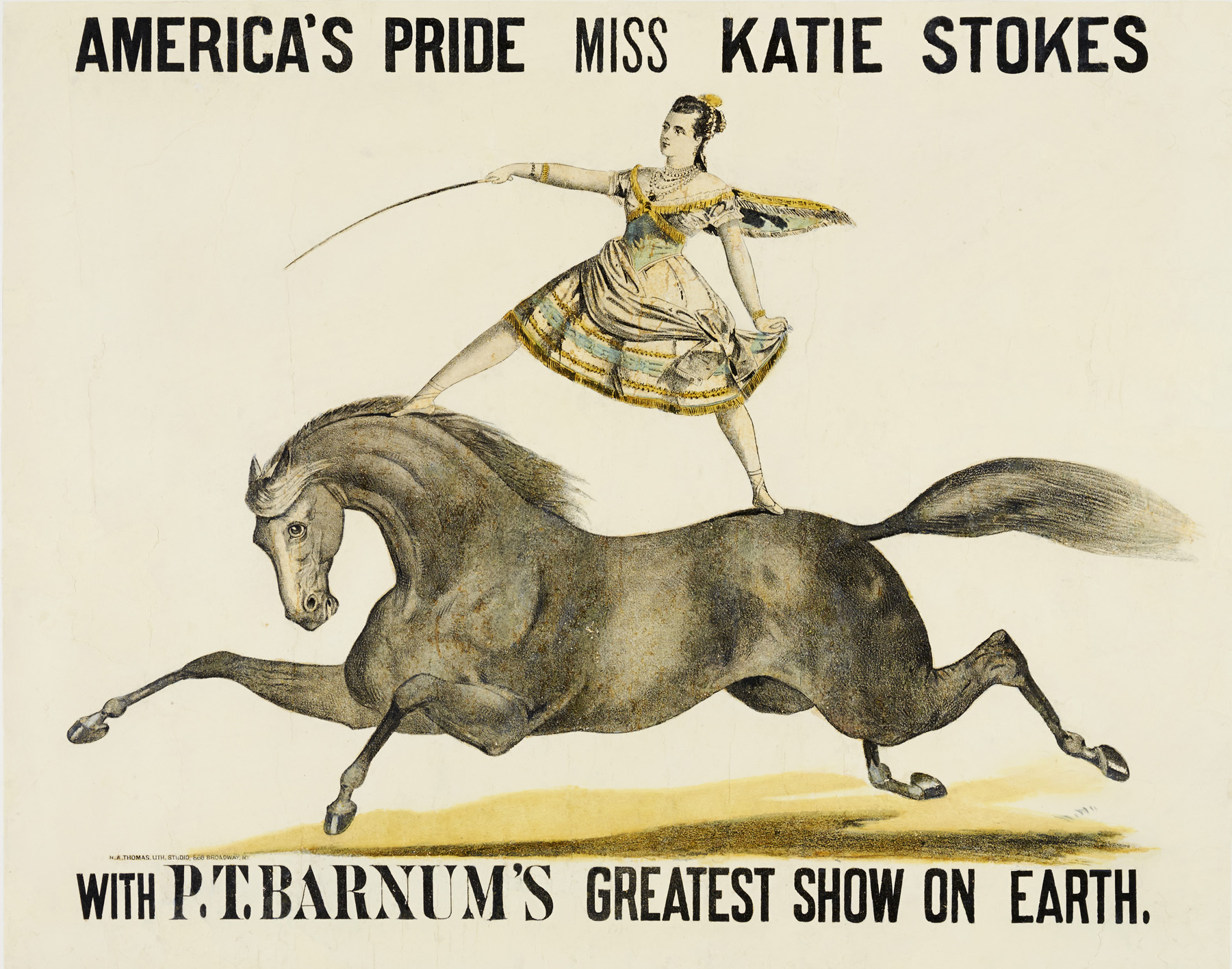 Women of the American Circus, 1880–1940