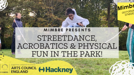 """banner with text """"Streetdance, Acrobatics & Physical Fun In The Park"""". There are logos in the corners."""